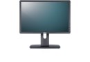 Professional P1913 Monitor