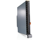 Fibre Channel-bladeswitches