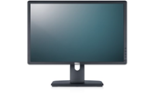 Professional P2213 Monitor