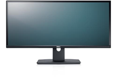 U2913WM Ultra-Wide Monitor
