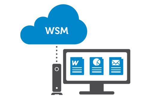 برنامج WSM من Dell Wyse