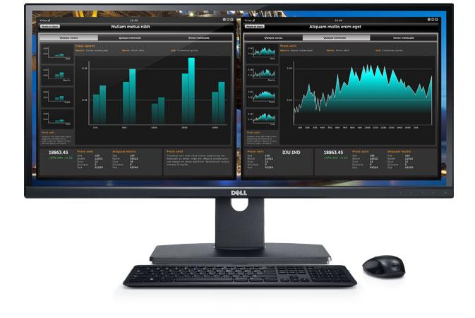 Monitorul Dell U2913wm