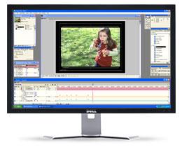 Dell 3007WFP Flat Panel Monitor