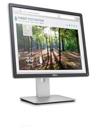 Monitor Dell 19   P1914S: diseñado para el trabajo y el hogar