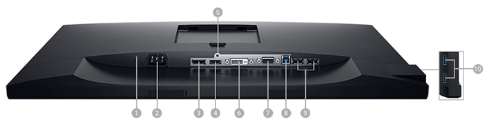 Dell 24 Monitor | P2421 - Connectivity Options