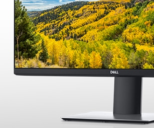 Dell 24 Inch QHD Monitor: P2421D | Green thinking for today and tomorrow