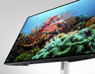 Dell UltraSharp 24 FHD Monitor: U2422HE | Green thinking: for today and tomorrow