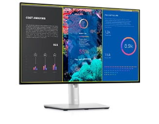Dell UltraSharp 24 FHD Monitor: U2422HE | Dell Display Manager
