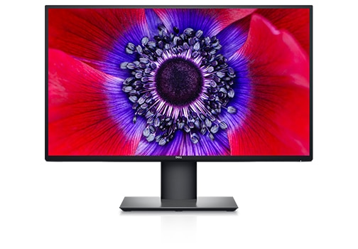 UltraSharp 25 USB-C Monitor | Captivate with color