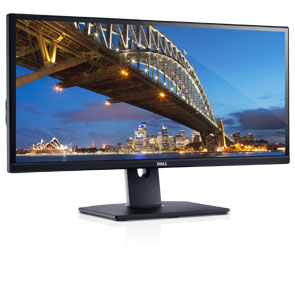 Dell UltraSharp U2913WM 29 inch Monitor