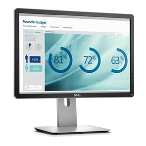 Dell Refurbished Professional 20 inch Monitor - P2016B