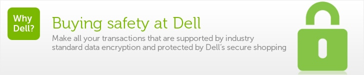 Online Security and Privacy at Dell