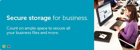 Secure storage for business.