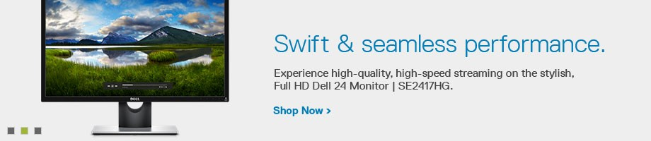 Dell 24 Monitor: SE2417HG