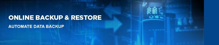 Dell Online Backup & Restore