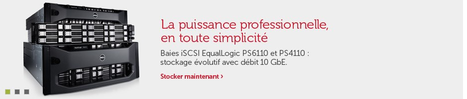 EqualLogic PS4110