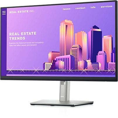 Dell Refurbished Professional 24 inch Monitor - P2422H