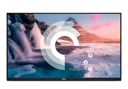 Dell P2219HWOST Monitor
