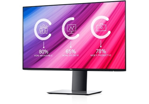 Dell UltraSharp 24 Monitor: U2419H