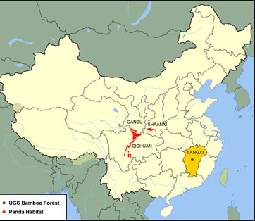 Map of Bamboo Forest in China