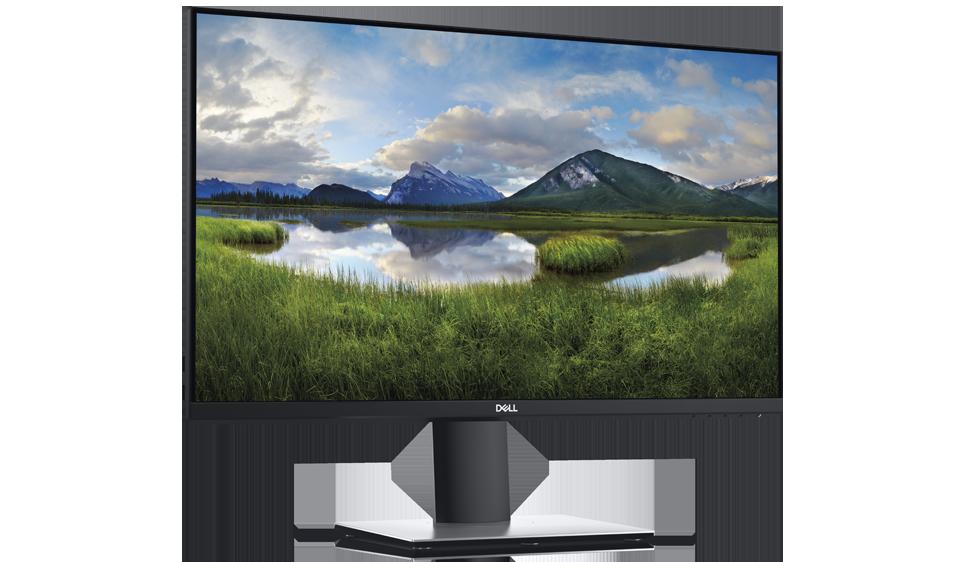 Monitor 23 Dell P2219H