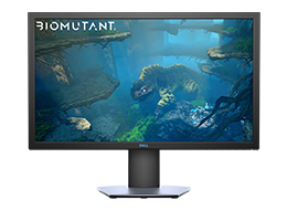 Multimedia Monitors