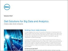 Solutions brief: Big data blueprint