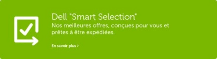 "Dell ""Smart Selection"""