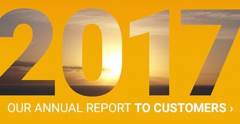 2017 Annual Report to Customers