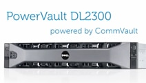 Dell PowerVault DL2300