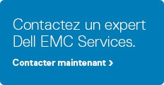 dell emc srvices